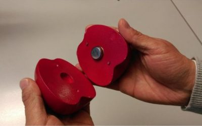 Fruit-shaped sensor 'can improve freshness'